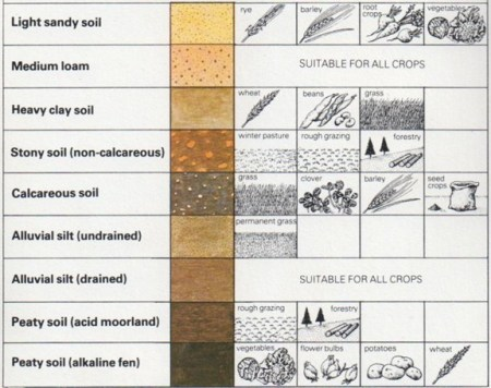 chart of soils and crops