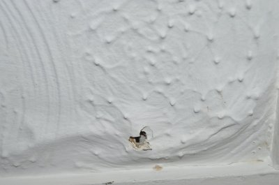 Textured ceiling, best way to make it smooth? | DIYnot Forums
