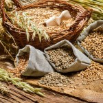 Is the Whole Grain Science a Load of Crap?