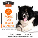 With QCHEFS You Can End Your Dog's Dental Woes