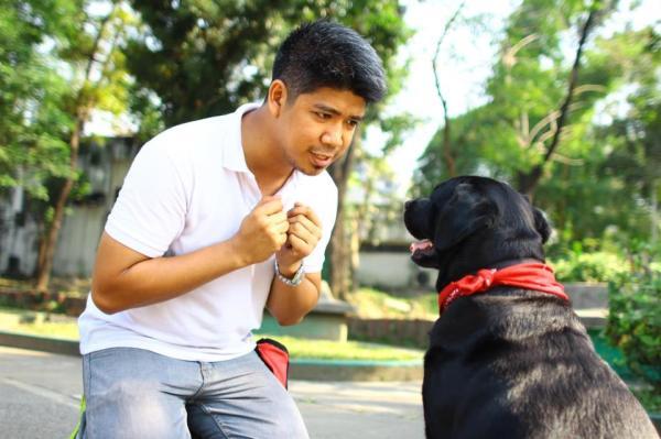 FREE Dog Training and Dog Ownership Responsibility Seminar House Rules