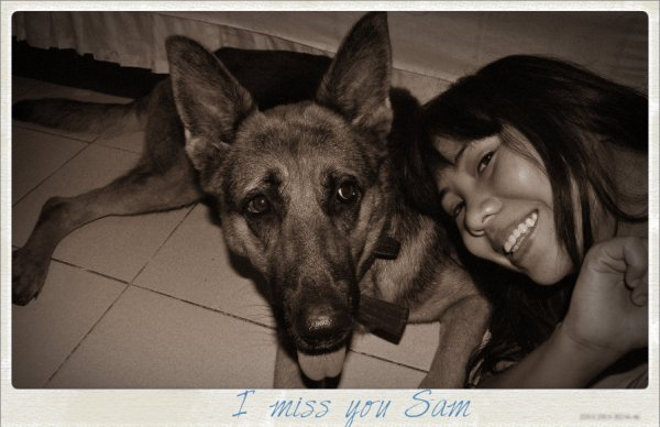 Missing Sam