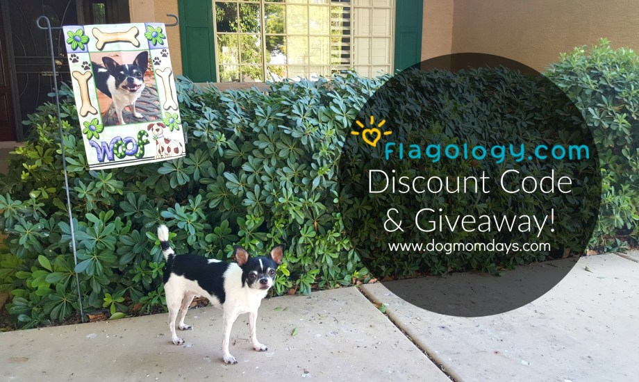 Jazz Up Your Garden With Flagology – Discount Code & Giveaway!