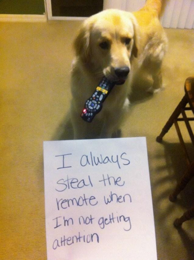 I Always Steal The Remote When Im Not Getting