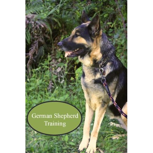 Medium Crop Of How To Train A German Shepherd Puppy