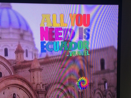 all-you-need-is-ecuador