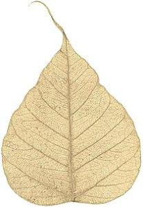 """Boda Tree -- 4"""" - Gold"""