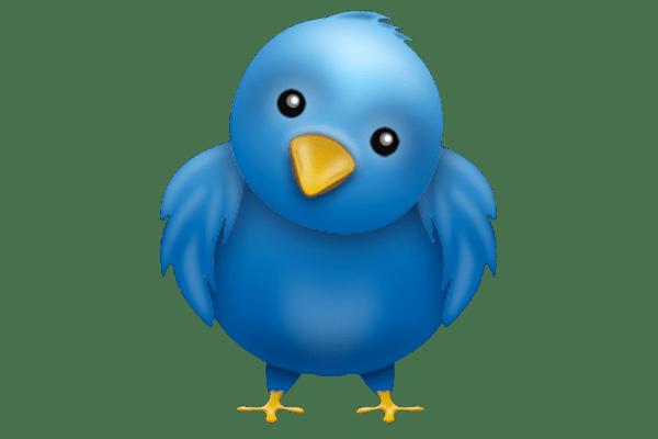 twitter_bird_wide
