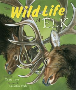 Wild Life of the Elk
