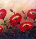 "Poppy Profusion 20 x 30"" Oil on canvas"