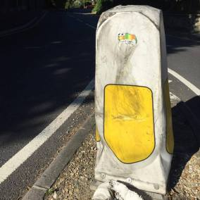 Don't Rain Skateboarding sticker Rainbow lizard