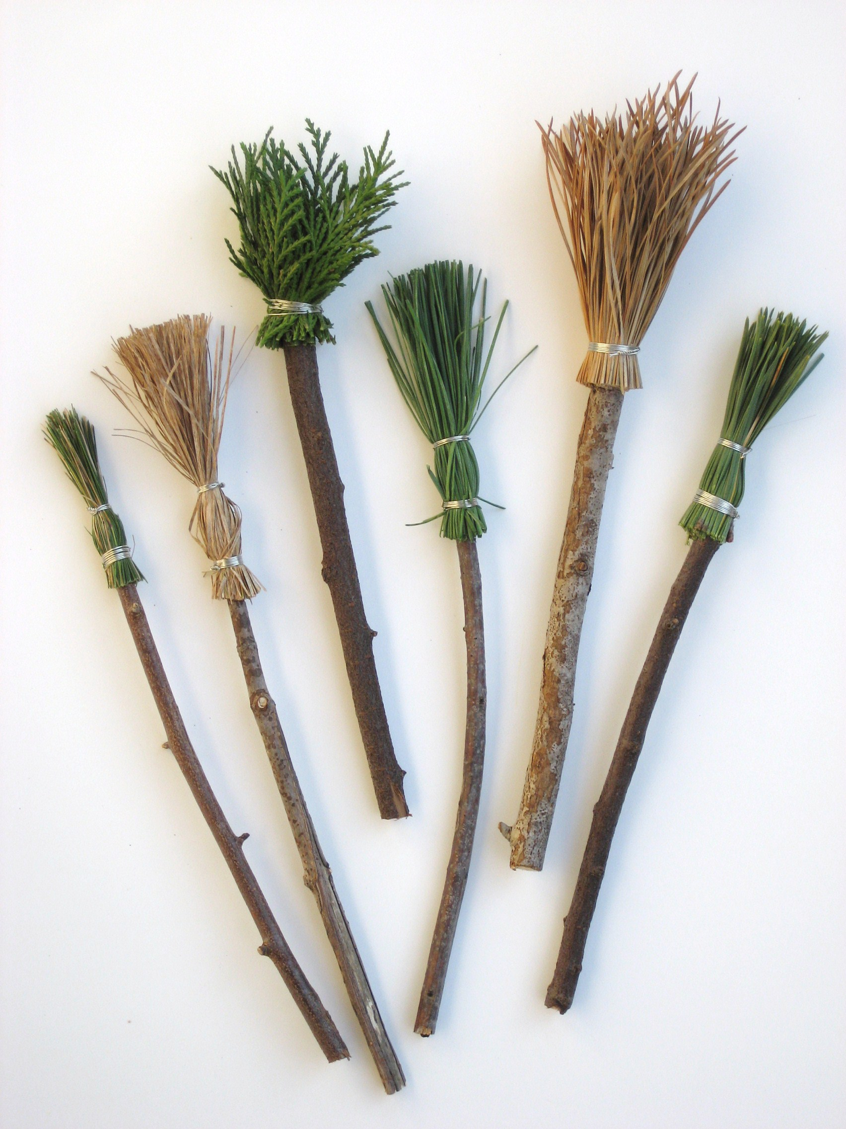 Making paintbrushes with natural materials doodles and jots for Painting with nature items