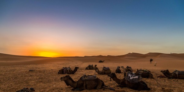 deserto do sahara_