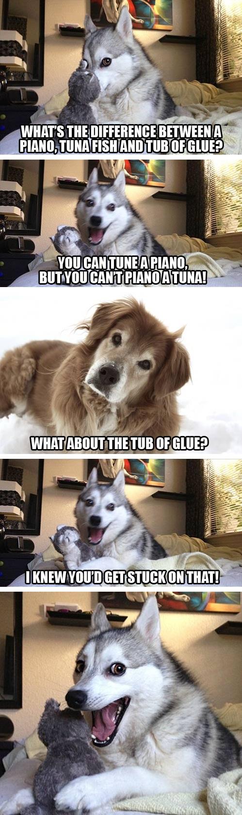 Gracious This Pun Dog Has A Few Jokes He Wants To Tell You Joke Dog Meme Generator Terrible Joke Dog Meme bark post Joke Dog Meme