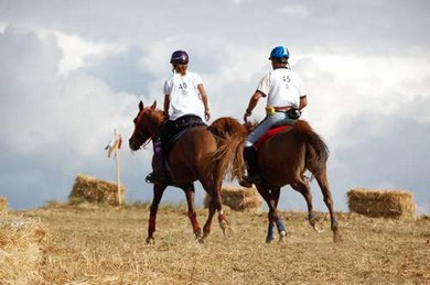 endurance_cavalli