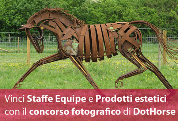 Premio fotografico: Cavallo che passione!