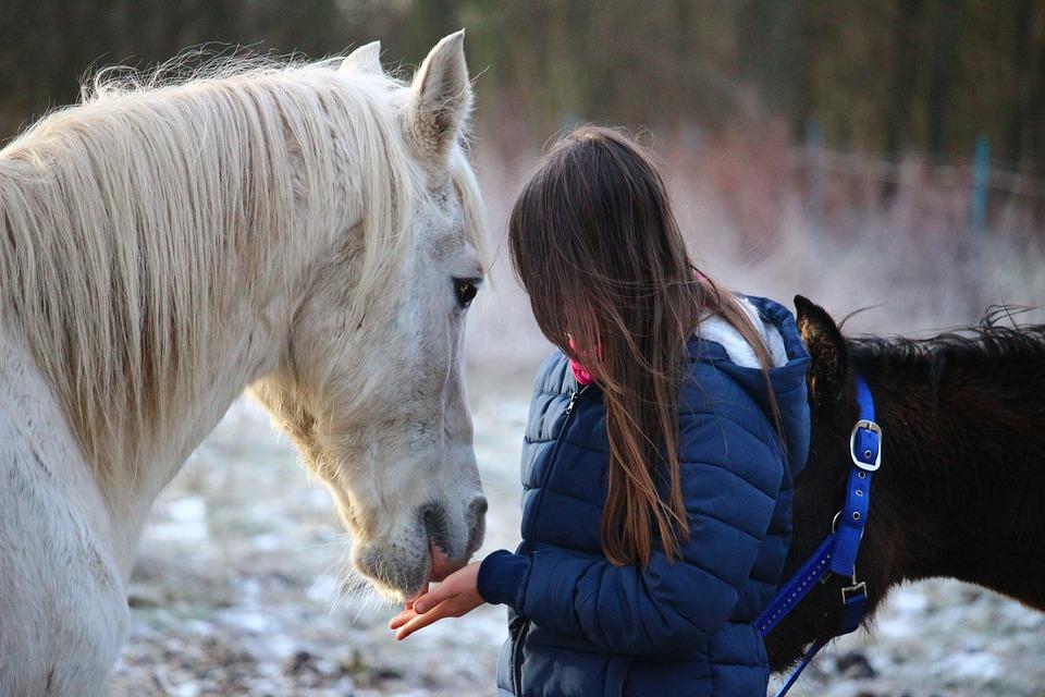 bimba e cavallo