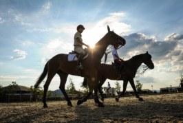Horses Le Lame, al via 'Le Lame International-Sagrantino Tour'
