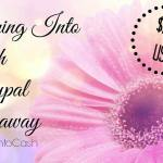 Spring Into Cash Giveaway Enter to win $260 USD via PayPal ends May 2, 2016
