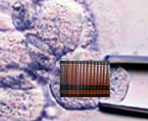 Genetic code as encyclopedia set