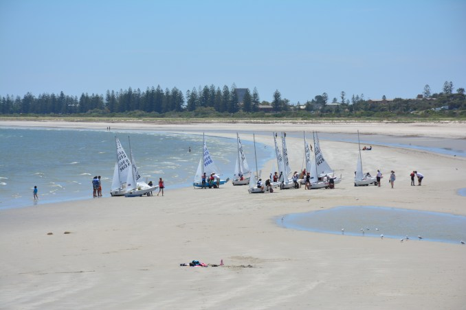 The stretch of beach at Largs Bay is perfect for hosting regattas.