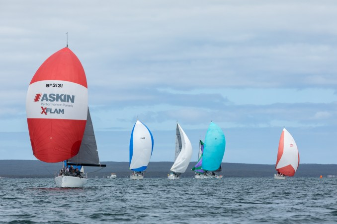 Division two racing on Boston Bay. Photos: Take 2 Photography