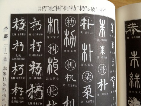 Calligraphy dictionary