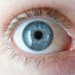 Eye-Reference (1)