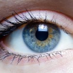 Eye-Reference (3)