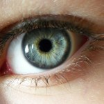 Eye-Reference (5)