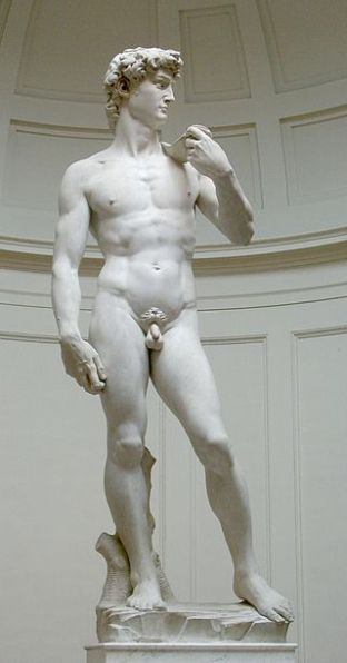 Michelangelo's David in the Galleria dell'Accademia, Italy