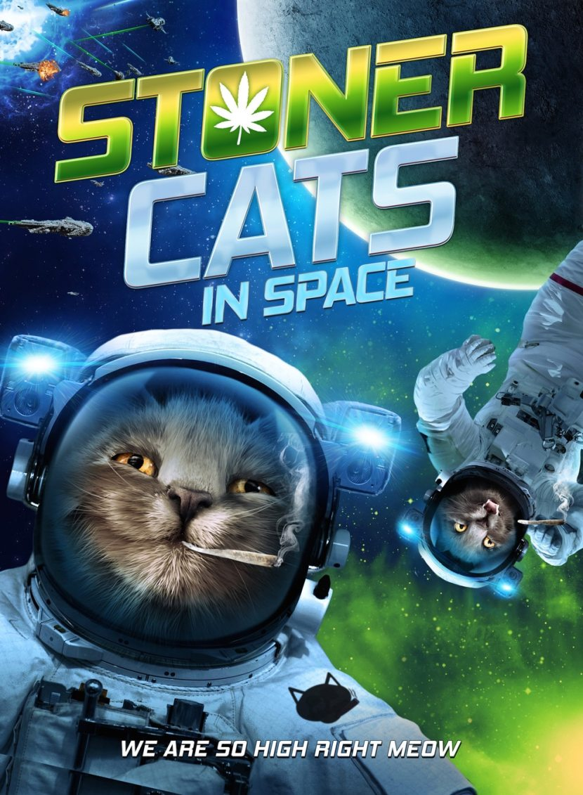 stoner cats in space - This Labor Day Weekend the Stoner Cats in Space Have a Job for You!