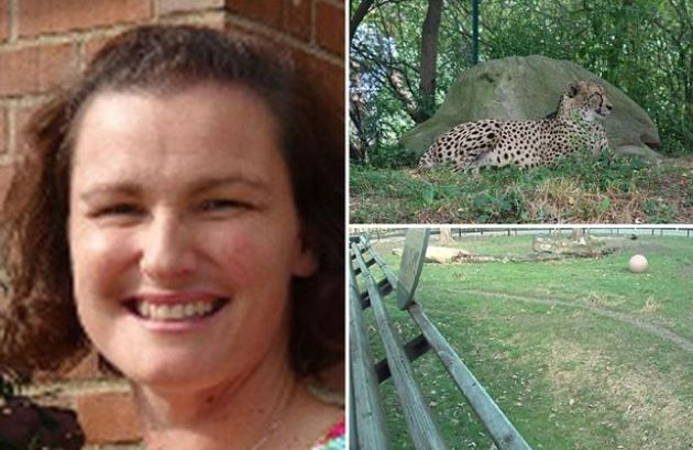 MAINMichelle-Schwab-mother-of-three-who-dropped-her-two-year-old-son-into-a-zoos-cheetah-enclosure-after-dangling-him