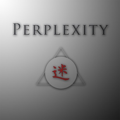 perplexity cover2