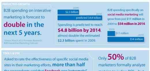 B2B Social Media Marketing Infographic