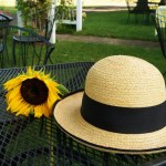 Travel Hats for Style and Sport with Tilley Endurables