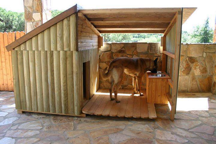 diy dog houses – dog house plans- aussiedoodle and labradoodle
