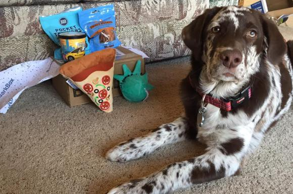 THE BARKBOX SUBSCRIPTION