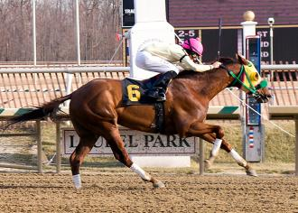 Rapid Redux winning 15th straight