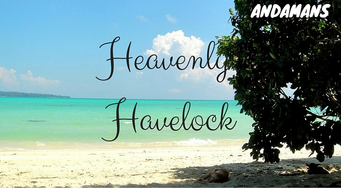 Havelock Island - the Ultimate Backpacker Destination