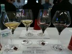 reidel glass tasting (1)