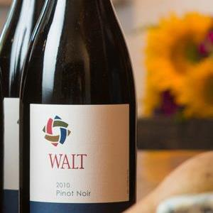 walt wines Review: WALT Wines, 2010 Vintages