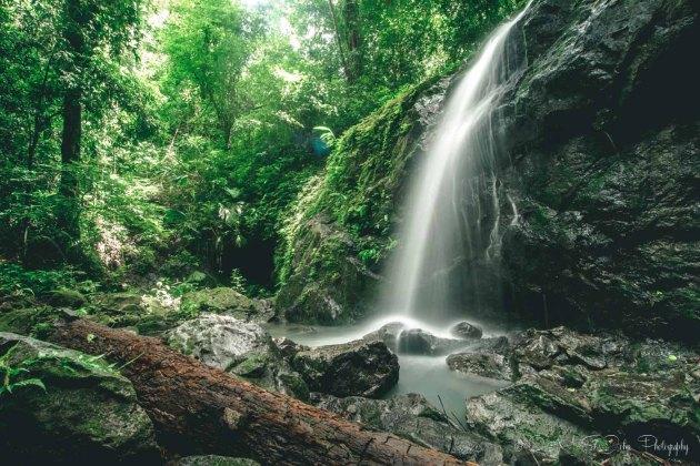 Costa Rica Manuel Antonio-8885