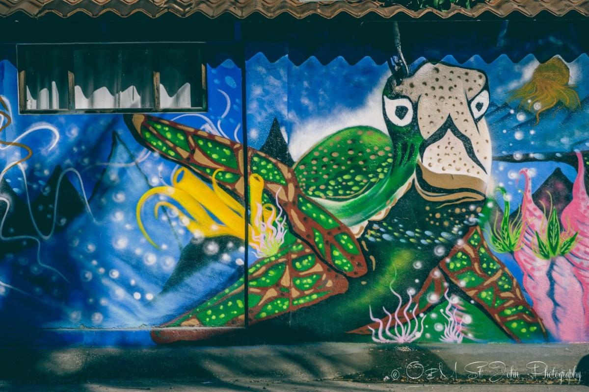 Wall art in Samara. Costa Rica