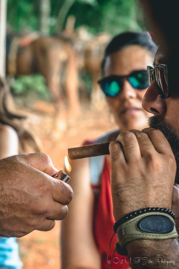 Cuba Vinales-6888
