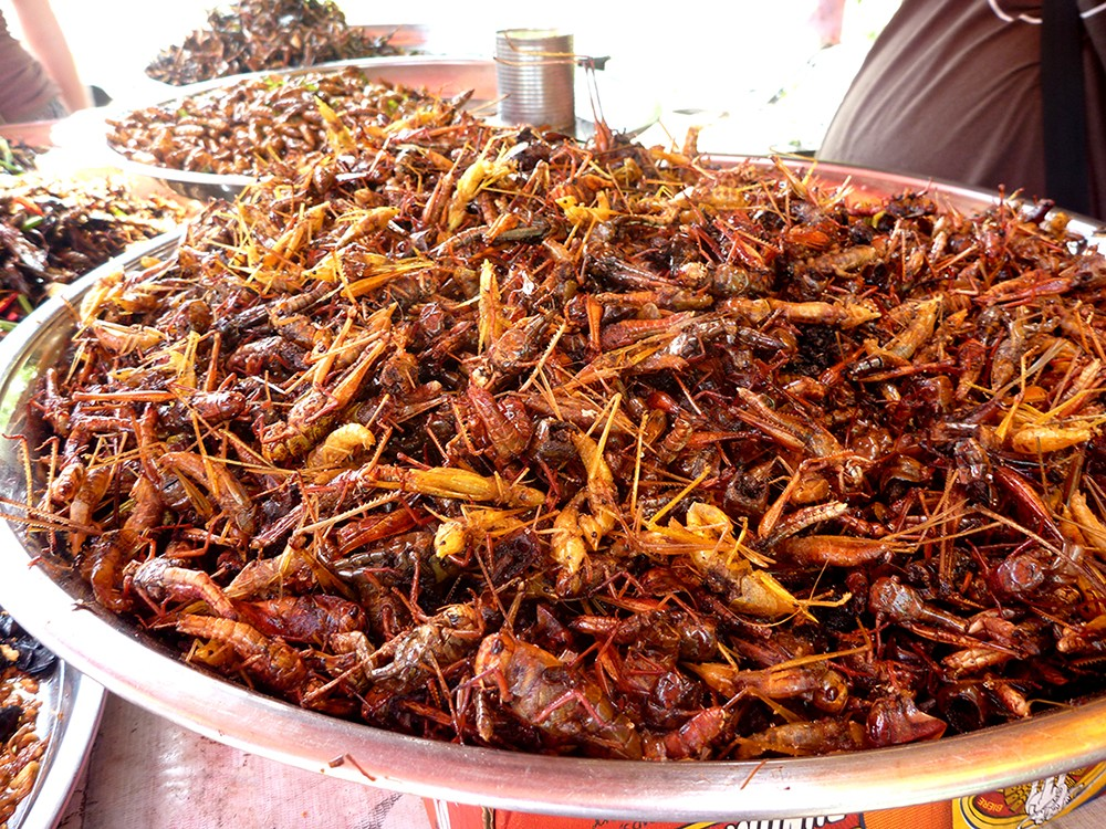 Fried Grasshoppers, Food in Cambodia