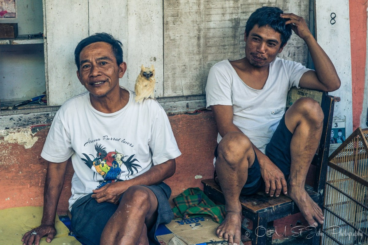 Indonesian men and their pet owl in Malang. East Java. Indonesia