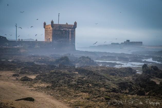 Morocco Essaouira-3422