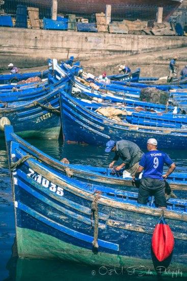 Morocco Essaouira-3520