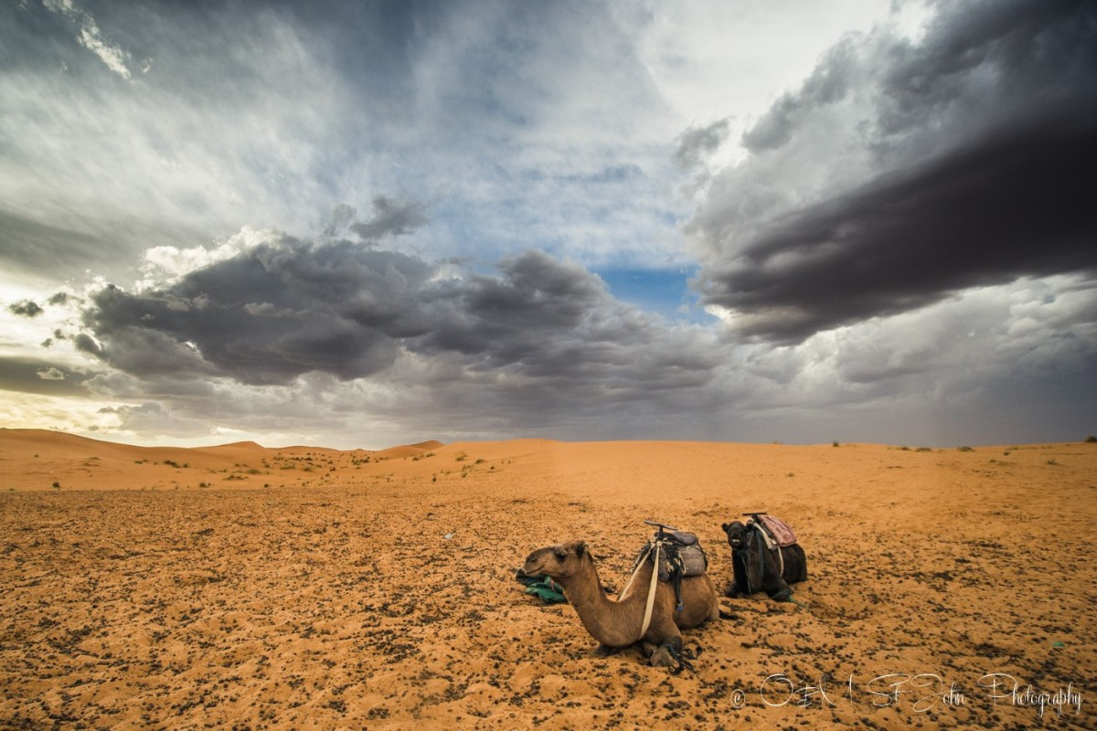 Angry skies over the Erg Chebbi. Sahara Desert. Morocco